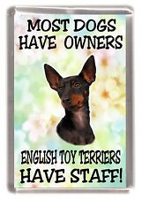 "English Toy Terrier Dog Fridge Magnet ""....... English Toy Terriers Have Staff"""