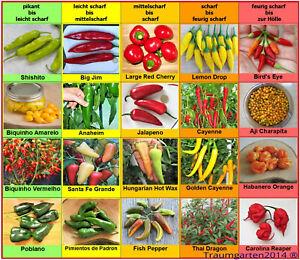 Chili Samen 20 Sorten Schärfegrad 1 bis 10 Charapita Carolina Reaper Saatgut