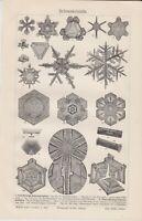 1895 Snow Crystals Snowflake Forms Antique Original Lithograph Print