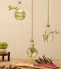 Transparent Wall Hanging Bulb Flower Plant Glass Vase Container Pot Home Decor