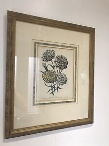 Large Jane Loudon 'Ladies Flower' 1st Edition 1843 Vintage Botanical Print