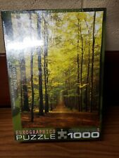 EuroGraphics Forest Path Jigsaw Puzzle, 1000-Piece