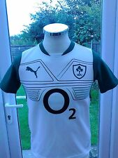 Ireland Rugby Football alternative jersey  size 30/32 Youth