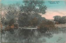 Meadville Pennsylvania~Cassewago Creek~Trees in Water~Reflection~1910 Rotograph