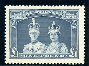 Australia 1938 KGVI £1 blue-slate superb MNH. SG 178. Sc 179.