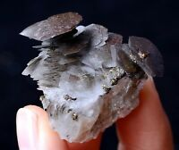 20.60gNatural Rare fish Scaly Calcite & 7Colored Pyrite Mineral Specimen /China