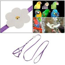 Adjustable Parrot Bird Training Leash Small Pet Walking Lead Rope Flying Harness