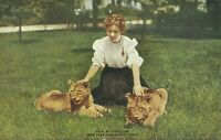 1907 Bronx Zoo Girl with Lion Cubs New York Zoological Park NYC Postcard 3996