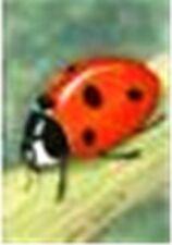 KEY RING.Ladybird.Hockin & Roberts