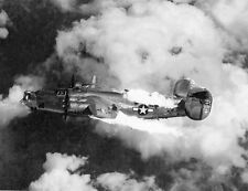 WWII Photo B-24D Liberator Burning Austria  WW2 World War Two B-24 USAAF / 5038