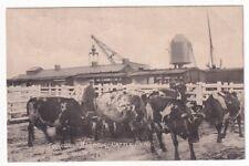 More details for fishguard harbour cattle pens pre 1918