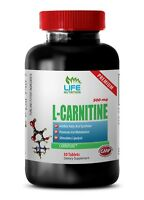 l-carnitine l-tartrate - L-CARNITINE 500mg 1 Bottle - workout supplement