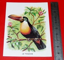 CHROMO ECOLE BON POINT IMAGE 1960-1970 OISEAU LE TOUCAN ANIMAUX F. NATHAN