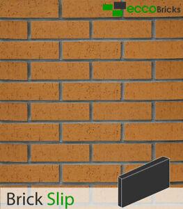 Brick Slips Brick Wall Cladding Brick Tiles Real Clay Decoration - Natural Ochre