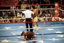 Old Boxing Photo Wilfredo Gomez After Knocking Down Carlos Mendoza