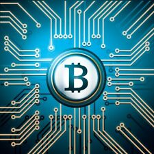 Bitcoin Domain Name BitCoinDawg.com Brandable Easy to Remember Crypto Currency