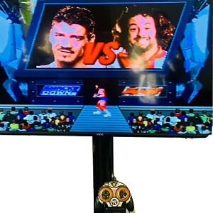 WWE World Wrestling Entertainment Plug N Play Jakks Pacific TV Games Works(2005)