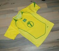 Dri-Fit Adriano #7 Soccer Brasil Brazil FOOTBALL SHIRT JERSEY Top Embroidered