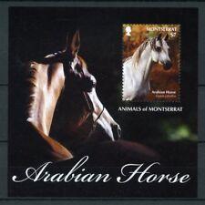 Montserrat 2011 MNH Animals 1v S/S Arabian Horse Farm Equus Caballus Stamps