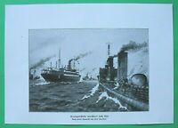 UM6) Marine Torpedoboot Marsch nach Ösel Saaremaa 1914-1918 Estland 1.WK WWI