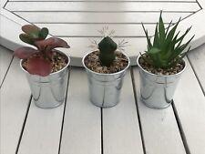 Set 3 Faux Succulent Plants Metal Pots Bathroom Kitchen Modern Artificial New