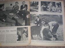 Photo article UK number 1 fashion model Barbara Goalen 1952 My Ref R