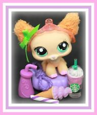 ❤️Authentic Littlest Pet Shop LPS #2514 Fuzzy Fluffy Chihuahua Dog w/ TIARA❤️