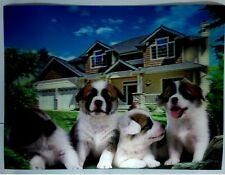 dogs house 3D Lenticular  Holographic Stereoscopic Picture Wall Art