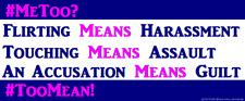 Anti Political Correctness Anti MeToo Hysteria Political Bumper Sticker Funny
