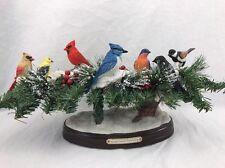 Nature's Harmony Bird Decoration Bradford Exchange Figurine LED Lighted Musical