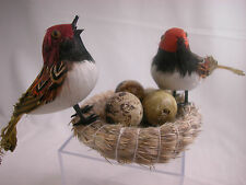 Closeout Birds and Nest  Set Feather Friend Last Stock Home Decor  #B916