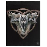 WOLF CELTIC 'WOLF TRIO' CANVAS MYTHICAL PLAQUE BY ANNE STOKES WALL ART