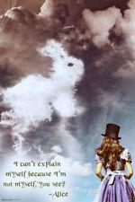 Alice in Wonderland Poster Print, 24x36