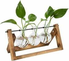 TQVAI Air Planter Terrarium Glass Vase(3 Bulb Vase) with Retro Wooden Stand and