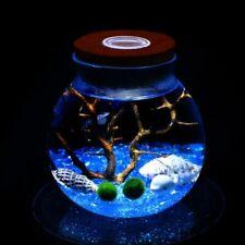 11 CM Round Glass Jar Terrarium with Colorful LED Light Cork Micro Landscape Eco