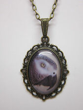 African grey Parrot bird  Vintage  glass cabochon pendant charm necklace bronze.