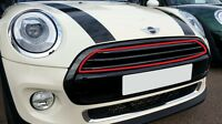 MINI NEW GENUINE F55 F56 F57 FRONT BUMPER UPPER CENTER GRILLE BLACK 7300586