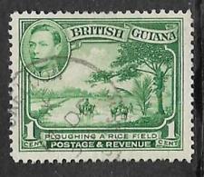 BRITISH GUIANA KGV1 ERA USED DEFINITIVE STAMP 1938 LOCAL SCENES 1c RICE FEILD