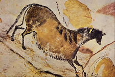 503010 cheval Lascaux Dordogne France A4 papier photo