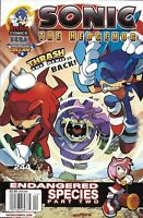 Sonic The Hedgehog Comic Issue 244 Modern Age First Print 2013 Ian Flynn Butler