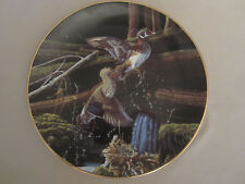 Wood Ducks collector plate Skyward Michael Budden Free As The Wind #1 Waterfowl