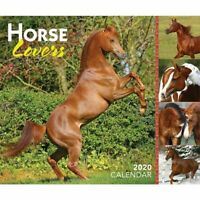 Horse Lovers 2020 Boxed Calendar by Browntrout 9781975416003 Free Post