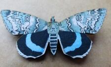 Butterfly  hand made brooch blue and black   blue