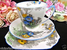 SHELLEY  TEA CUP AND SAUCER TRIO PAINTED FLORAL POPPY & TREES PATTERN TEACUP