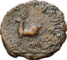 Gallienus AE Antoninianus Diana Antelope Rome Mint Ancient Authentic Roman Coin