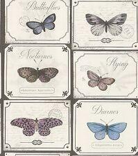 SALE Postcard Butterfly Kitchen Bathroom Wallpaper Grey Blue Butterflies 306507