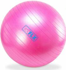 Gym Ball (Pink)