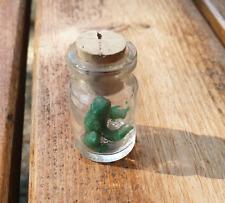 Grüner Frosch im Glas