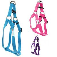 Doodlebone Dog Puppy Harness Adjustable Bold Nylon Lead Rings 5 Colours