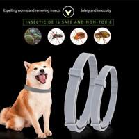Flea And Tick Collar For Large Dog Over 18lbs 8 Month Protection Cat Collars New